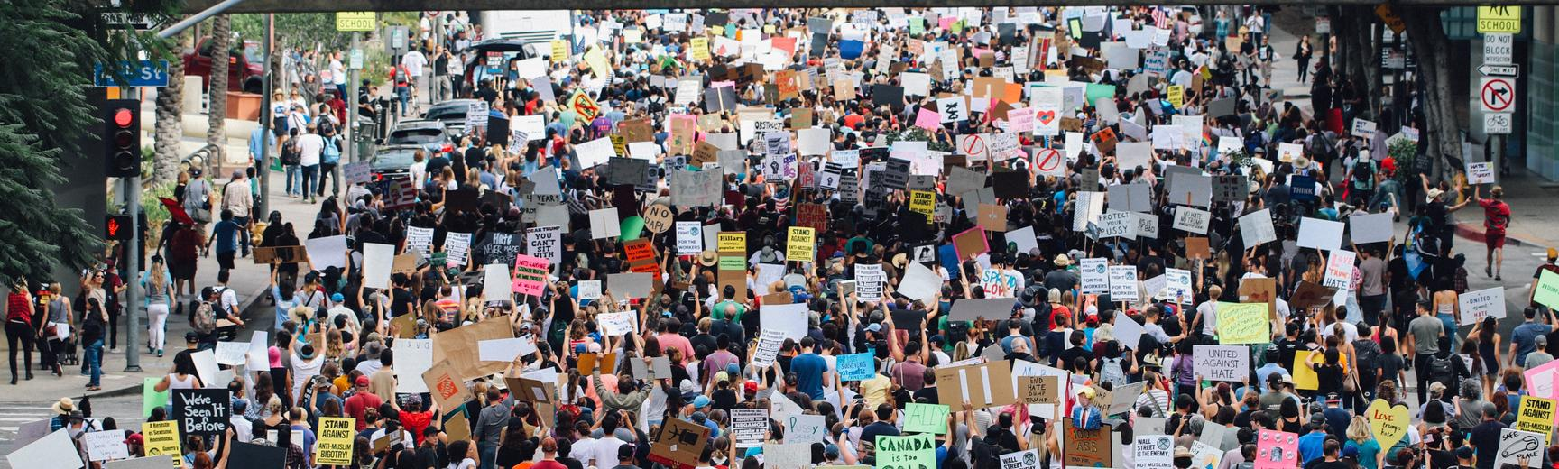 aerial view of large march, crowd holding placards